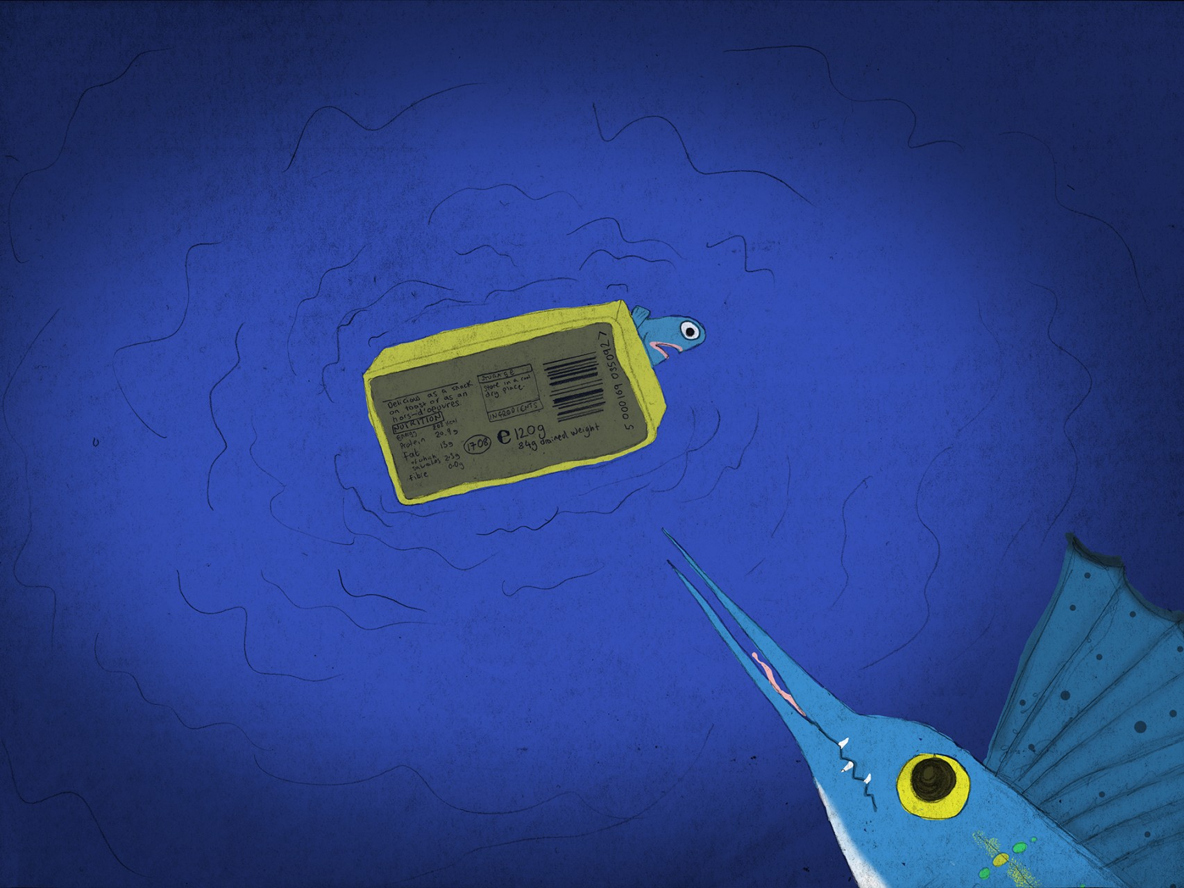 page 16f - sailfish underneath 2